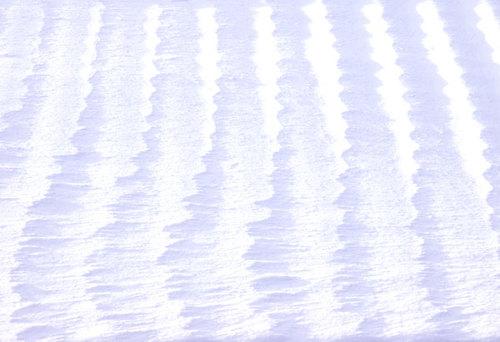 スノー ホワイト