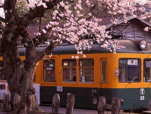桜の六分駅