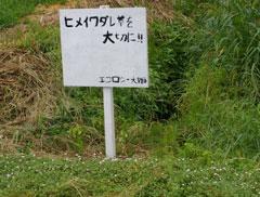 Iwadare