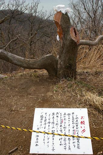 Kakudako5_4