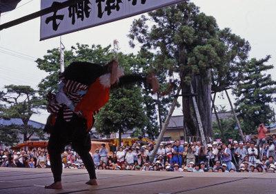 Osugi