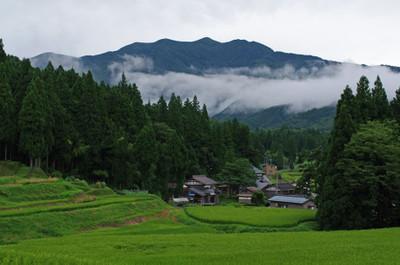Tanada900_2