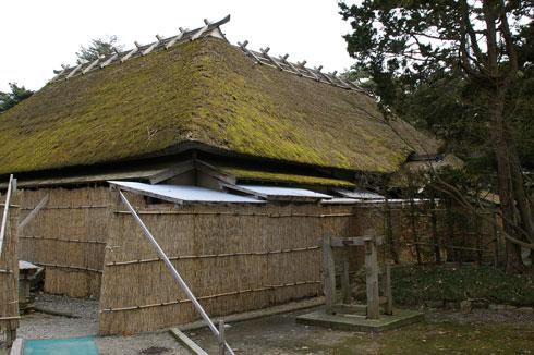 Wakabayasi