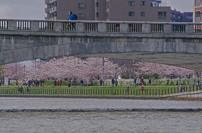 Yusuragi11